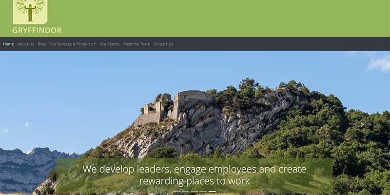 Management development consultancy | Very fast responsive website design with CMS