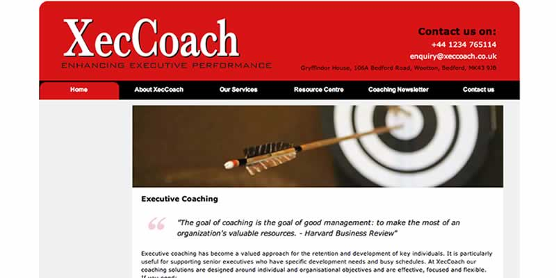 Executive consultant website